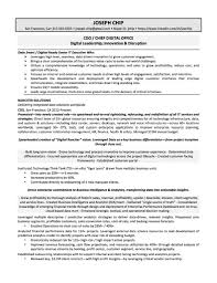 s executive resume chief operations director coo resum s cv for s executive doc