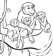 Small Picture Vervet Monkey coloring page Animals Town animals color sheet