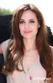 Angelina Jolie Hair Style angelina jolie hairstyle easyhairstyler 8708 by wearticles.com