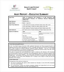 It Audit Report Template Magnificent Daily Business Summary Template Sample Business Record Keeping
