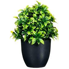 artificial plant cleaner artificial plant potted plant artificial plant wall mounted artificial plant simply silk artificial artificial plant