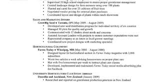 How To Make A Resume With No Work Experience Resume Make A Resume Online Make Resume Online Free Easy Make A 83