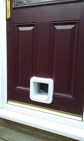 medium size of door design sureflap grp cat flaps in glass doors midlands flap fitter