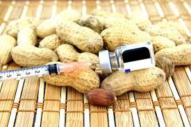 Exposure to peanuts builds immunity in allergic children