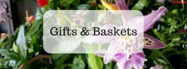 send a gift baskets from a charlotte nc florist
