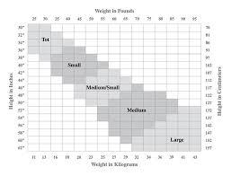 Tights Size Chart Capezio Hosiery Size Charts