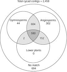 Venn Diagram Plants A Venn Diagram Reveals Shared Gene Sets Between Cycad C Open I