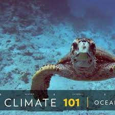 oceans facts and information