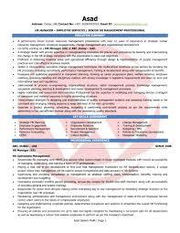 hr manager sample resumes tim lange com resume and letter sample download refrence