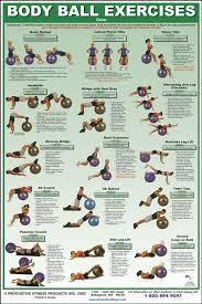 exercise charts for ility ball balance ball swiss ball and bosu