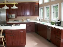 Small Picture Kitchen Sealing Painted Kitchen Cabinets Best Paint To Use On