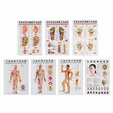 Leg Acupressure Points Chart 7pcs Set Acupuncture Massage Point Map Chinese English