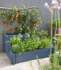 urban gardening ideas on your terrace