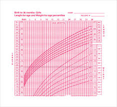 Baby Length Chart By Month Sample Baby Size Chart 7 Documents In Word Pdf
