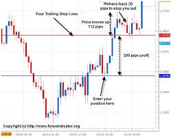 Trailing Stop On Quote Impressive Trailing Stop On Quote Friendsforphelps
