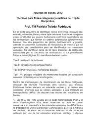 Tecnicas Para Fibras Colagenas Y Elasticas Del Tejido Conjuntivo 1
