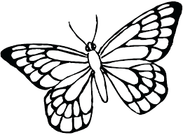 Butterflies And Flowers Coloring Pages Psubarstoolcom