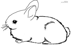 free printable bunny rabbit coloring