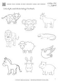 zoo animals worksheets – vitokens.info