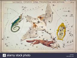Lacerta Cygnus Lyra Vulpecula And Anser Astronomical
