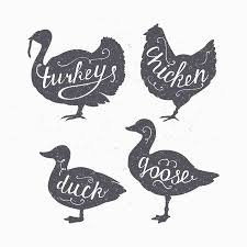Set Of Hand Drawn <b>Hipster Style</b> Farm <b>Birds</b> Silhouettes. Chicken ...