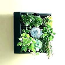 wall mount planter wall hanging planter wall mount planter wall mounted plant holders wall mounted planters