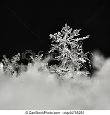 real snow background. Exellent Background Snowflake Macro Photo Of Real Snow Crystal Beautiful Winter Background  Seasonal Nature And The Weather In Winter Throughout Real Snow Background T