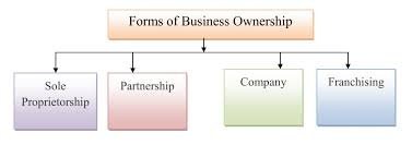 forms of ownership simplynotes forms of business ownership simplynotes