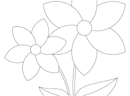 Coloring Pages To Print For Adults Animals Out Free Kids Flowers