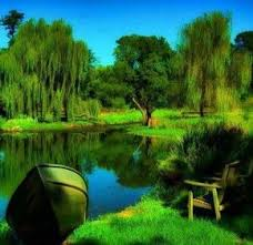 most beautiful green nature wallpapers in the world. Most Beautiful Green Nature Wallpapers In The World To Pinterest
