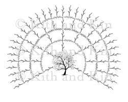 Lds Genealogy Fan Chart Free Blank Genealogy Family Tree Fan Chart 5 Generations
