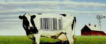 food inc movie review film summary roger ebert food inc movie review