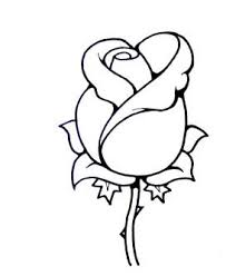 273x333 coloring pages impressive simple roses to draw rose drawings in
