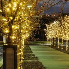 decorative string lighting. solarpowered string lights in white decorative lighting r