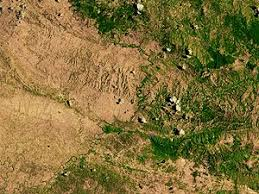 environmental issues in  deforestation edit