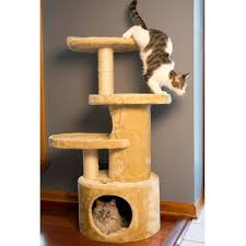 Iconic Pet - Dual Post Cat Tree Condo Tower Beige Show Dog Store
