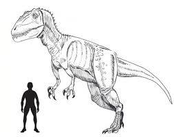 carcharodontosaurus size july 2014 everything dinosaur blog