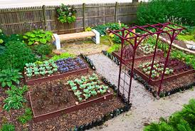 Small Picture garden design with productive vegetable gardening tips for