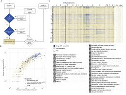 Veterinary Drug Interaction Chart Machine Learning Guided Association Of Adverse Drug