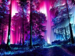 Wallpaper Neon Forest - Novocom.top