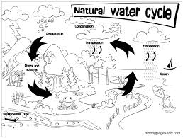 Small Picture Natural Water Cycle Coloring Page Free Coloring Pages Online