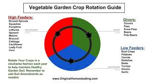Vegetable Garden Crop Rotation Must Have Handy Garden Guide
