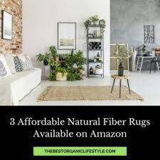affordable natural fiber area rugs from