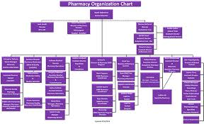 The Organization Chart Pharmacy Organization Chart Department Of Pharmacy