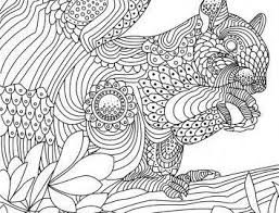 The Squirrel Coloring Pages For Kids And Printable Coloring Pages
