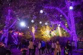 La Zoo Lights 2018 Tickets Los Angeles Zoo Lights Bigit Karikaturize Com