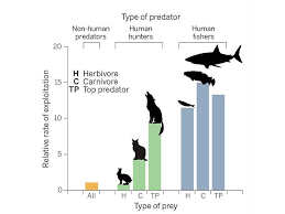 Modern Humans Have Become Superpredators Science Smithsonian