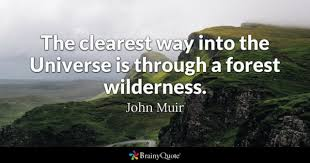 Forest Quotes Beauteous Forest Quotes BrainyQuote