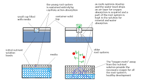 completely passive non recirculating hydroponic systems yes its possible