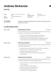 Bartender Resume Sample Writing Guide Resumeviking Com